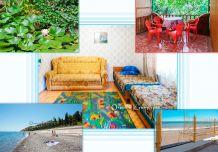Отдых в Крыму, жилье в Крыму, Солнечногорское